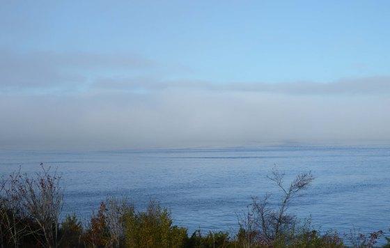 bergen fjord view